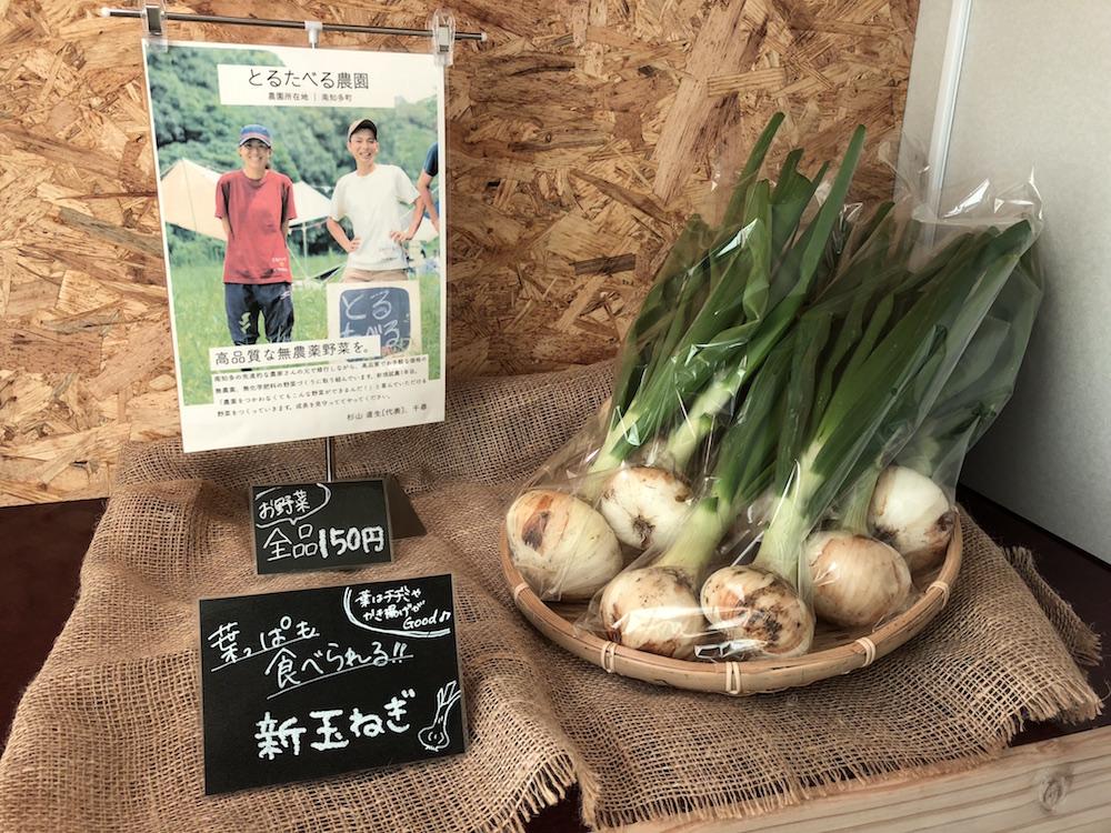 直売所に並んだ野菜(玉ねぎ)