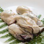 お魚マイスターが教える、美味しい牡蠣の見分け方